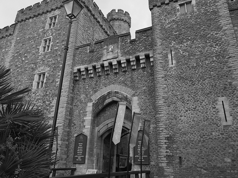 A picture of a castle in black and white