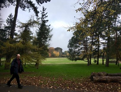 walking, Mindfulness, parks