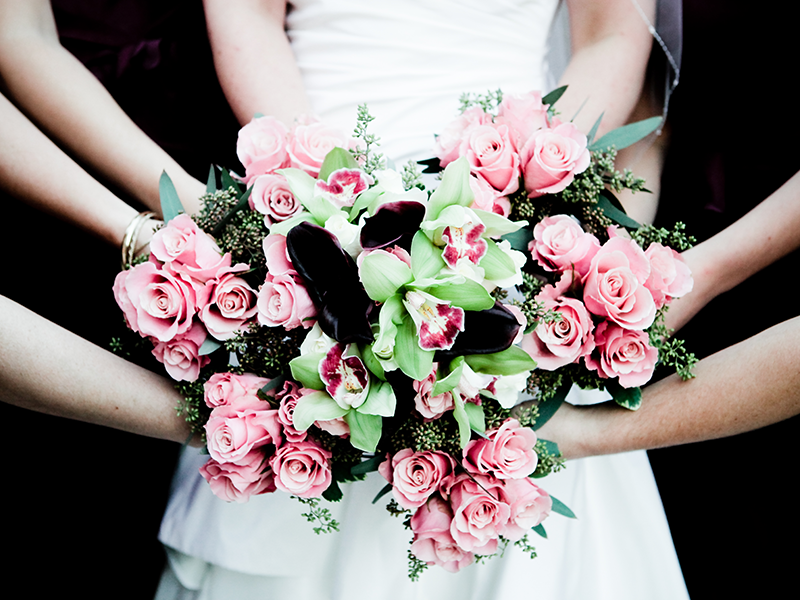 Flowers being held by many hands