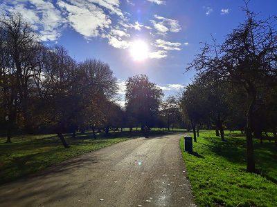 Bute Park, Path, Sunny