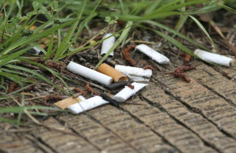 Cigarette litter is a hazard to our environment, with trillions of cigarette butts tossed out every year worldwide